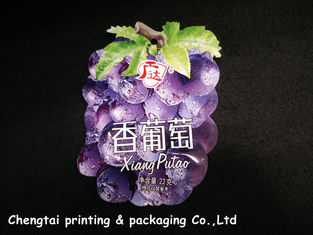 China Moisture proof small Shaped Pouches food safe plastic bags Stand up supplier